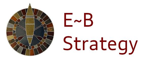 E~B Strategy